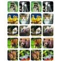 BABY ANIMALS REAL PHOTOS THEME