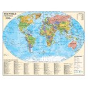 Political Series World Map