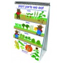 FLIP CHARTS ALL ABOUT PLANTS EARLY
