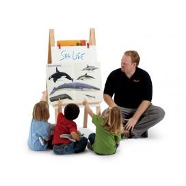 Teachers' Easel - Big Books / Lessons | Jonti-Craft | Teaching Easels