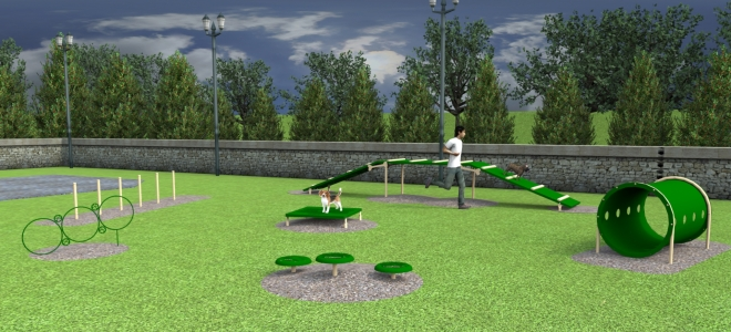 Advanced Small Dog Agility Course