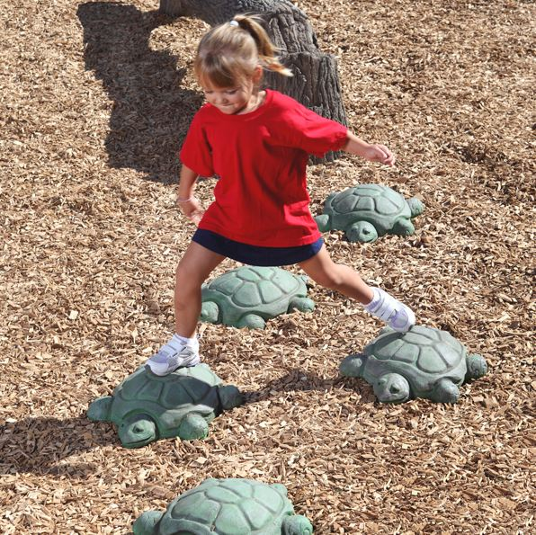 Turtle Stepping Stone.JPG
