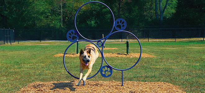 Dog Backyard Playground Equipment : Dog Playground Equipment