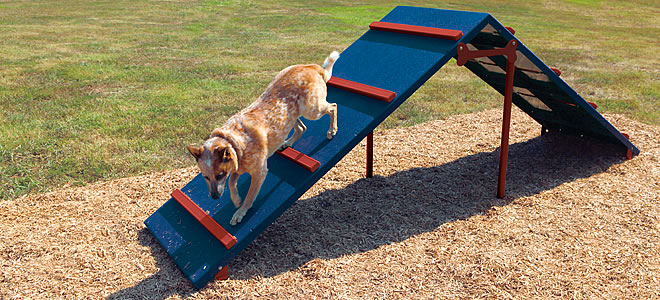 King of the Hill Dog Agility Obstacles | Dog Agility Courses