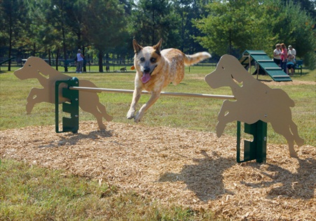 Expert Dog Agility Courses | Agility Equipment | Dog Park Rover Jump Over